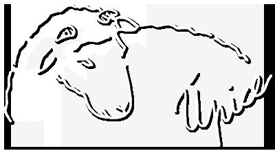 logo_dum_beranek